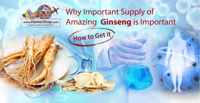 https://hamershop.com/image/cache/catalog/Blog/Supply%20of%20Ginseng/Supply-of-Ginseng-1170x600.jpg
